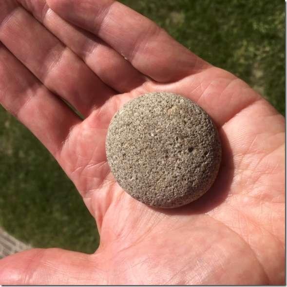 steen-W585